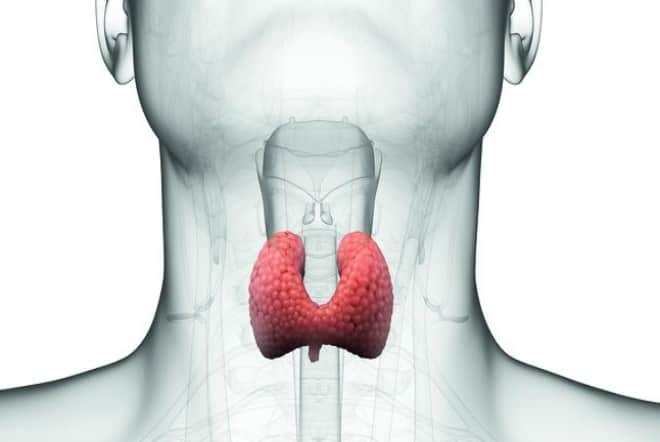 Hypothyroidism Could Yours Be The Undetected Milder Version