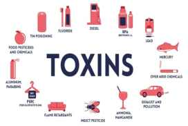 Environmental Toxins: You can fight back, here's what to do?